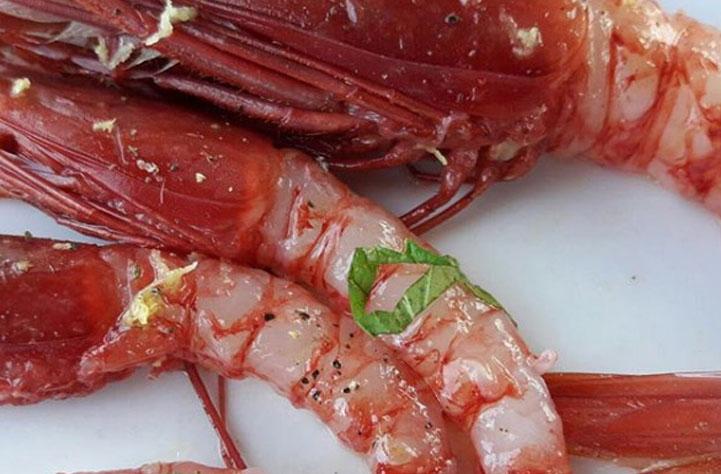 menu ristorante punta lena in riva al mare